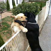 I give u my big hug buddy!
