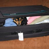Will u take me with you?