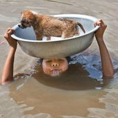 Boy save a puppy from a flood