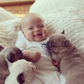 Baby covered in french bulldog puppies