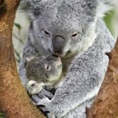 A mother is a perfect love.