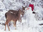 snowman with deers