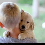 puppy and boy