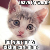 Your job is taking care of me!